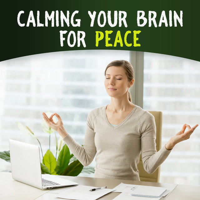 Calming Your Brain for Peace - Mindfulness Meditation for Stress Relief, Yoga, Spa & Relaxation