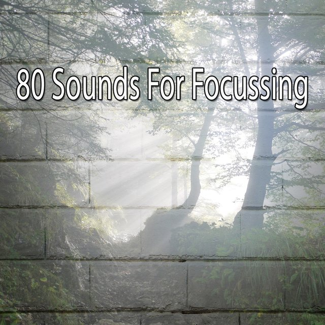 80 Sounds for Focussing