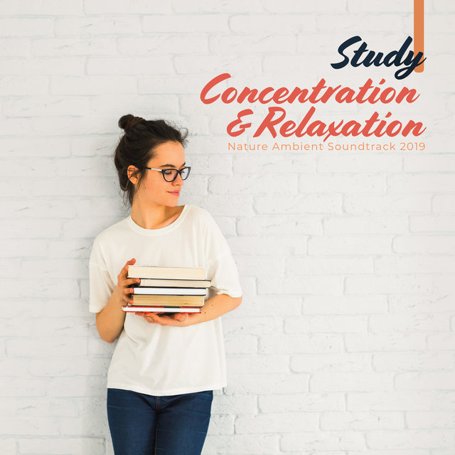 Study, Concentration & Relaxation Nature Ambient Soundtrack 2019