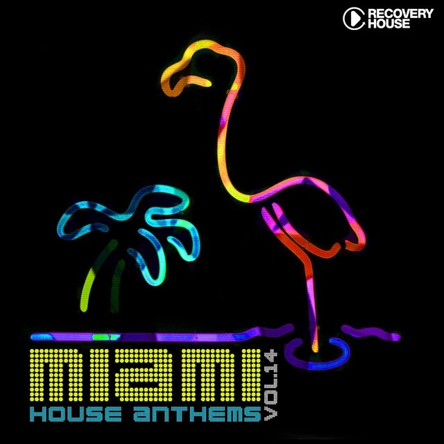 Miami House Anthems, Vol. 14