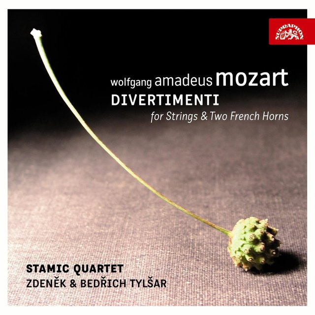 Mozart: Divertimenti for Strings and 2 French Horns