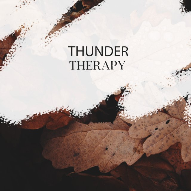 Calming Thunder Studio Therapy
