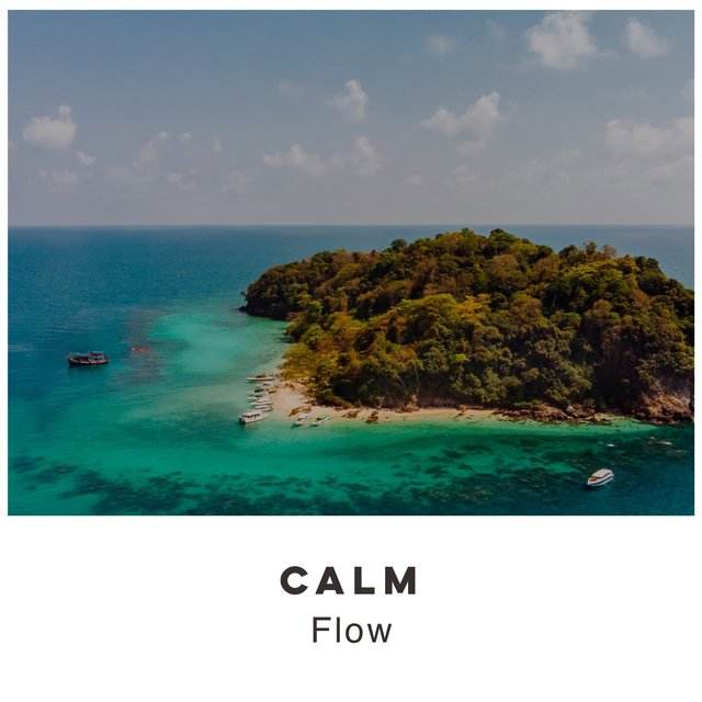 # 1 Album: Calm Flow