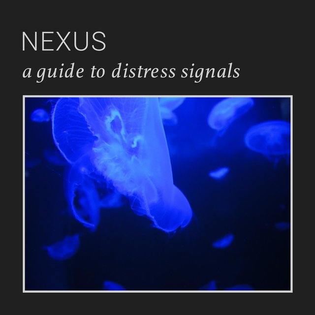 A Guide to Distress Signals