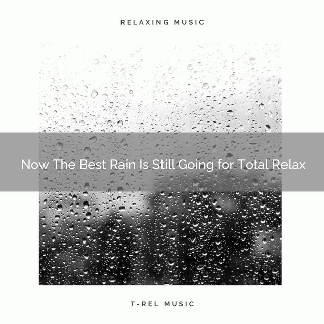 2020 Best: Now The Best Rain Is Still Going for Total Relax