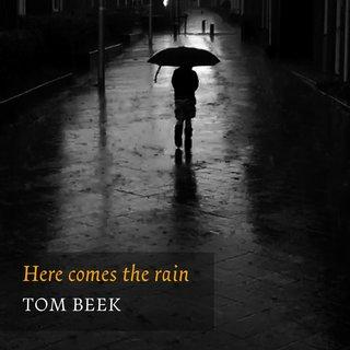 Tom Beek Tidal