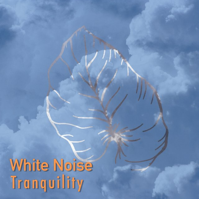 # White Noise Tranquility