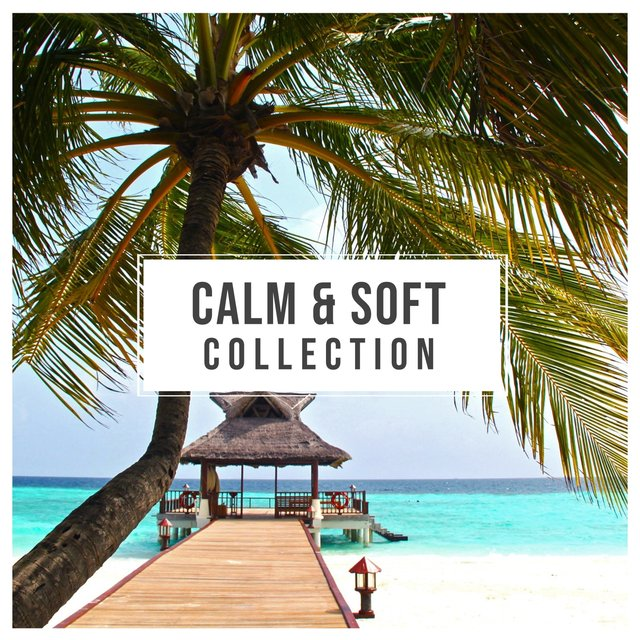 # Calm & Soft Collection