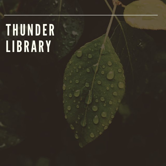 Soft Thunder Sleep Library