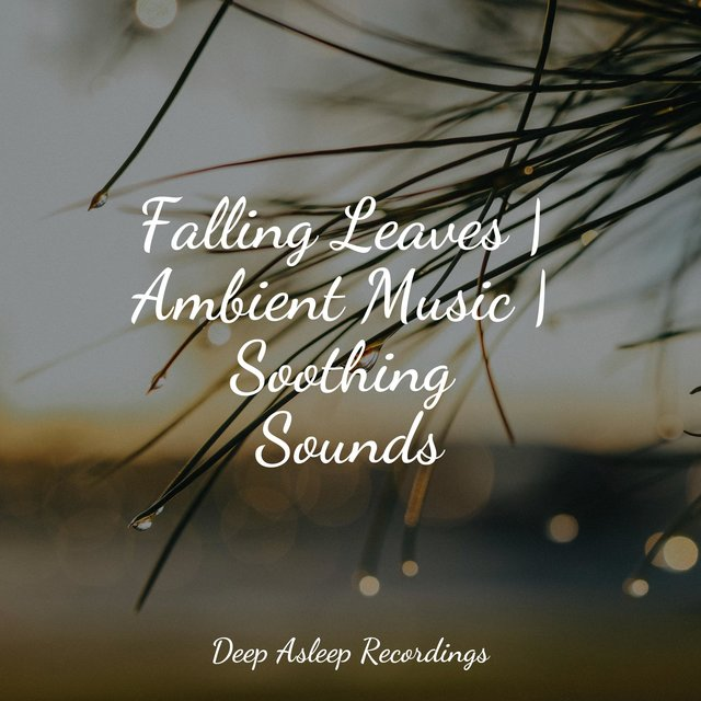 Falling Leaves | Ambient Music | Soothing Sounds