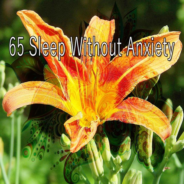 65 Sleep Without Anxiety