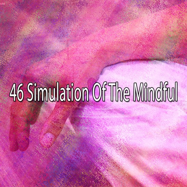 46 Simulation of the Mindful