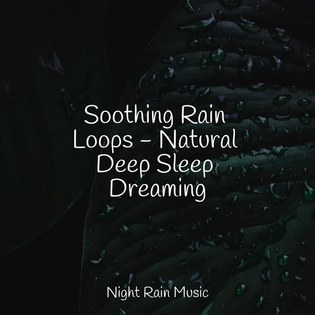 Soothing Rain Loops - Natural Deep Sleep Dreaming