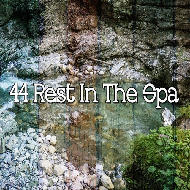 44 Rest in the Spa