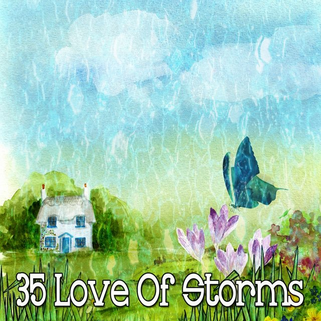 35 Love of Storms
