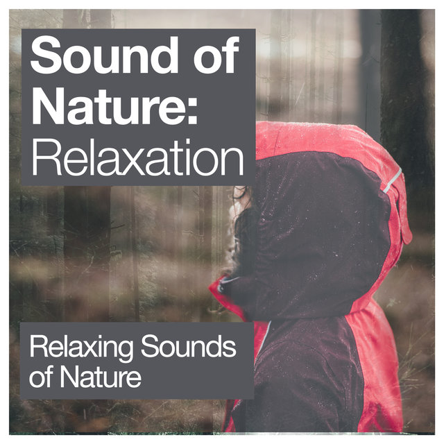 Sound of Nature: Relaxation
