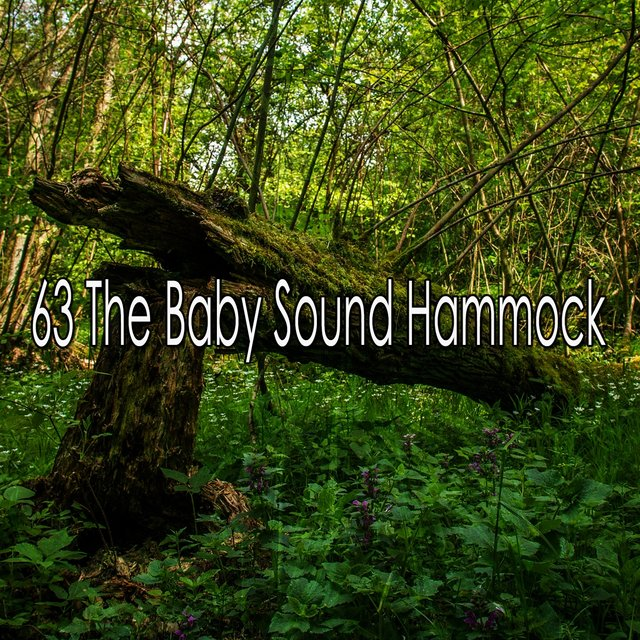 63 The Baby Sound Hammock