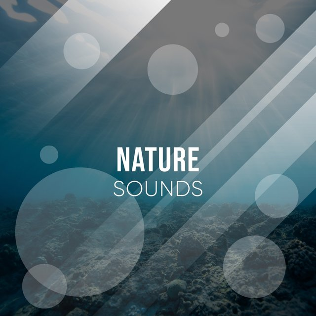 Spiritual International Nature Sounds