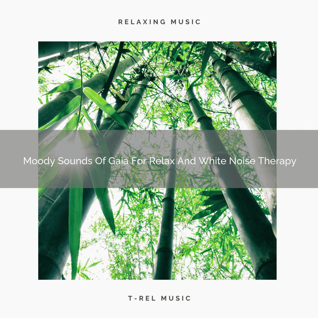 Moody Sounds Of Gaia For Relax And White Noise Therapy