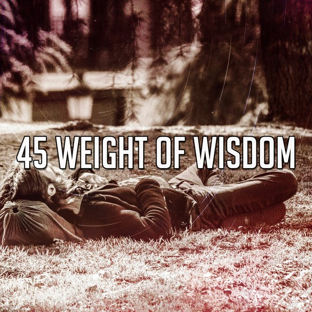 45 Weight of Wisdom