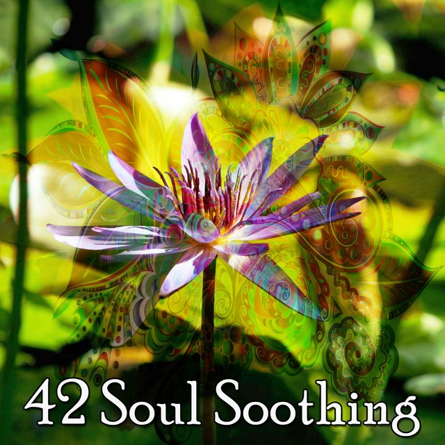 42 Soul Soothing