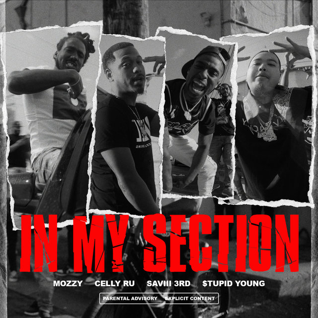 In My Section (feat. Saviii 3rd & $tupid Young)