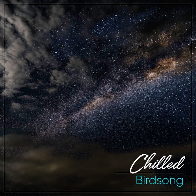 # 1 Album: Chilled Birdsong