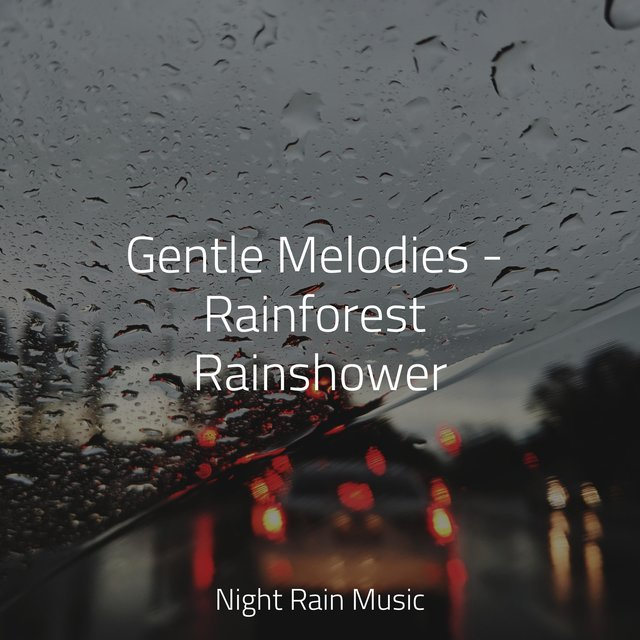 Gentle Melodies - Rainforest Rainshower