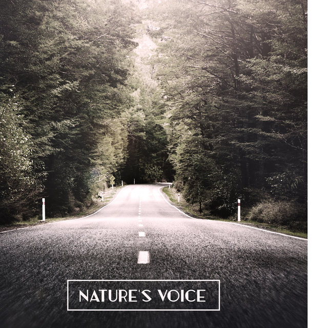 Nature's Voice: Combination of Delicate Sounds of Nature with Deeply Relaxing Ambient Music