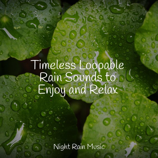 Timeless Loopable Rain Sounds to Enjoy and Relax