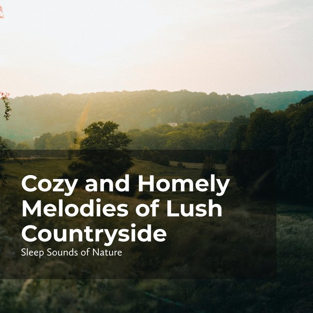 Cozy and Homely Melodies of Lush Countryside