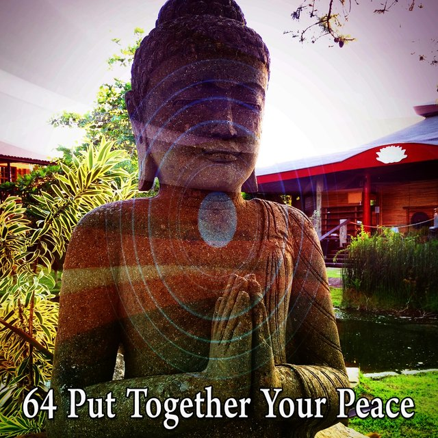 64 Put Together Your Peace