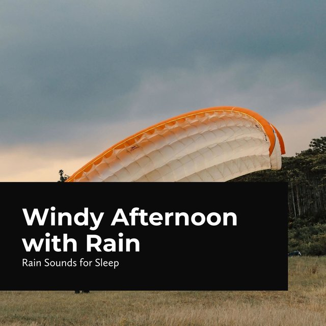 Windy Afternoon with Rain