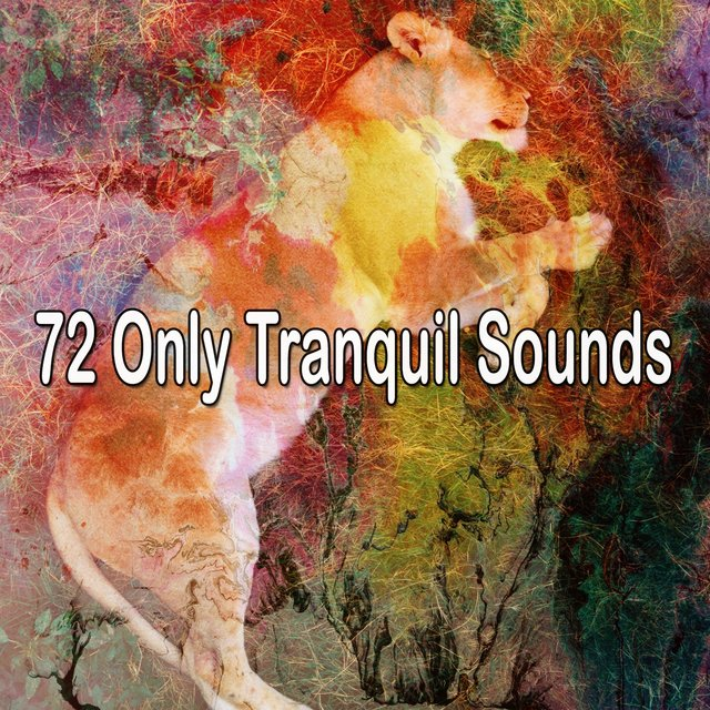 72 Only Tranquil Sounds