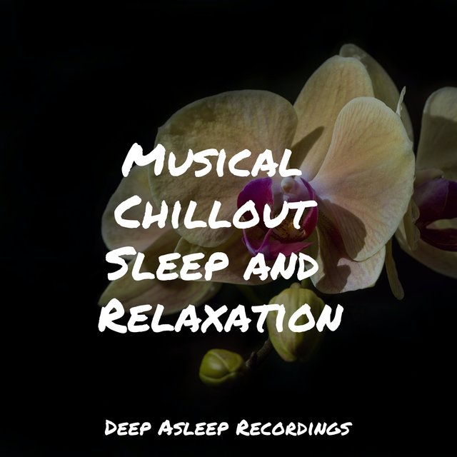 Musical Chillout Sleep and Relaxation