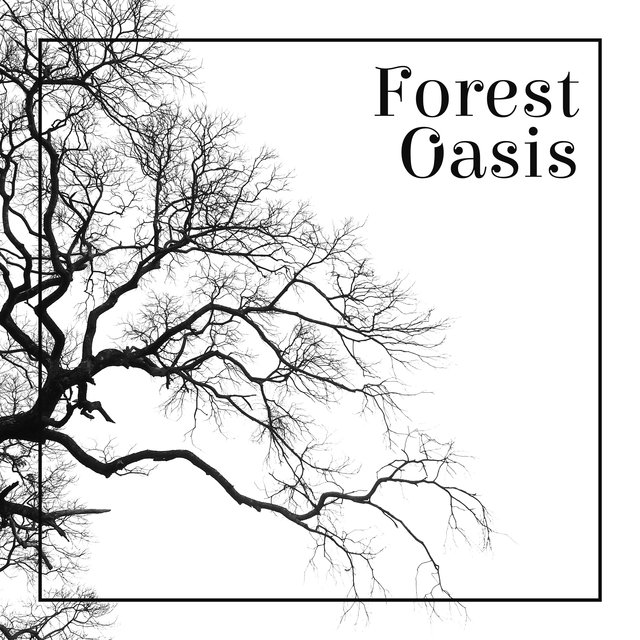 Forest Oasis - Into the Woods, Calm Down, Relaxing Music, Stress Free, Forest Ambience, Healing Sounds