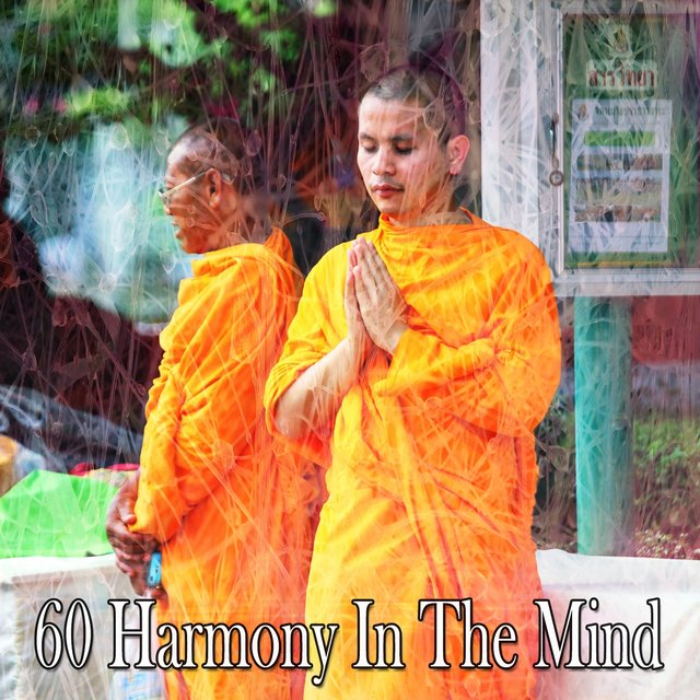 60 Harmony in the Mind
