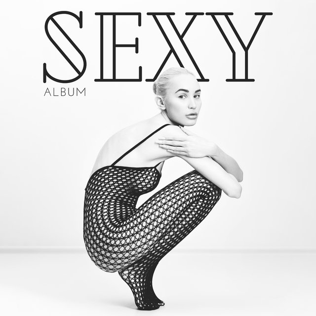 Sexy Album (Contains 15 Extremely Sexy Jazz Tracks)