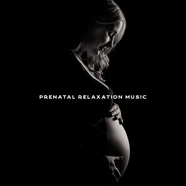 Prenatal Relaxation Music for Pregnancy for the Unborn Baby and Future Parents