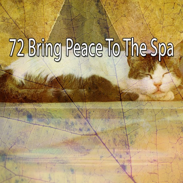 72 Bring Peace To The Spa