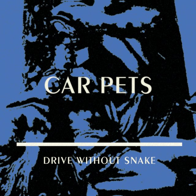 Drive Without Snake