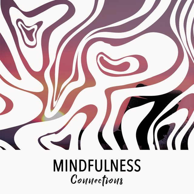 # 1 Album: Mindfulness Connections