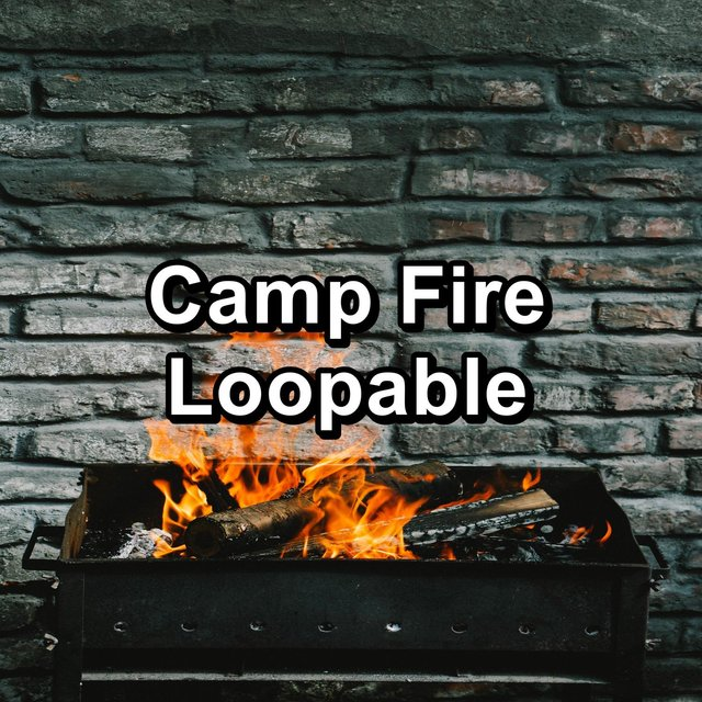 Camp Fire Loopable
