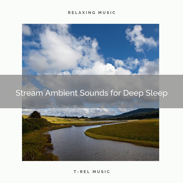 Stream Ambient Sounds for Deep Sleep