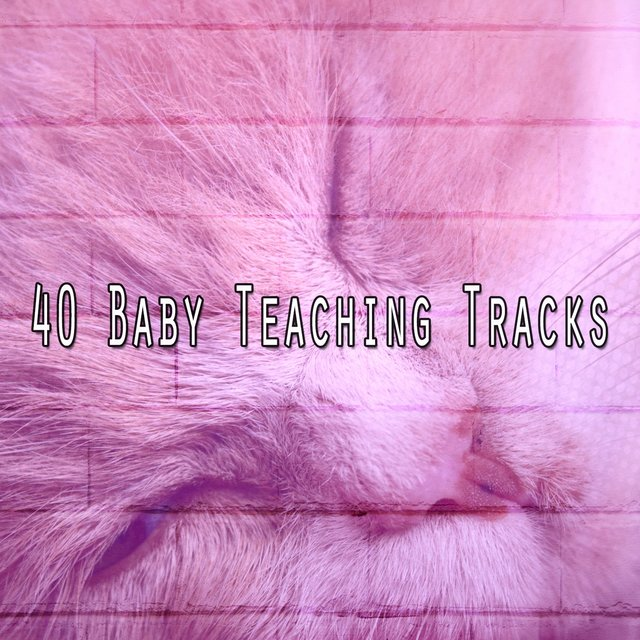 40 Baby Teaching Tracks