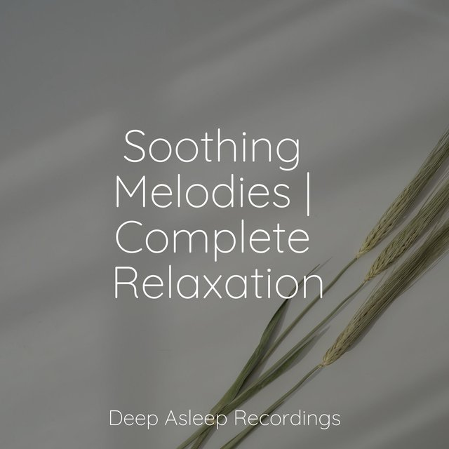 Soothing Melodies | Complete Relaxation