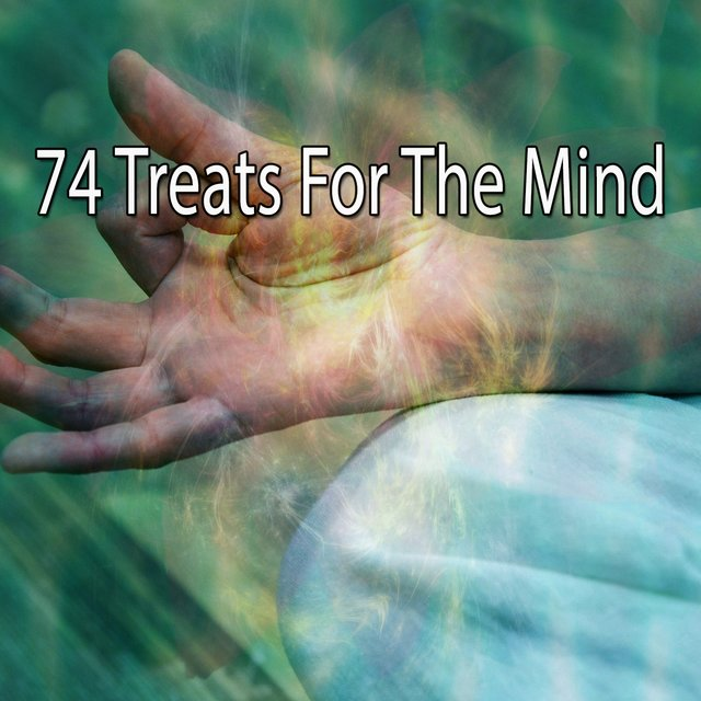 74 Treats for the Mind