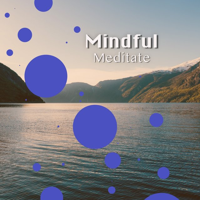 # 1 Album: Mindful Meditate