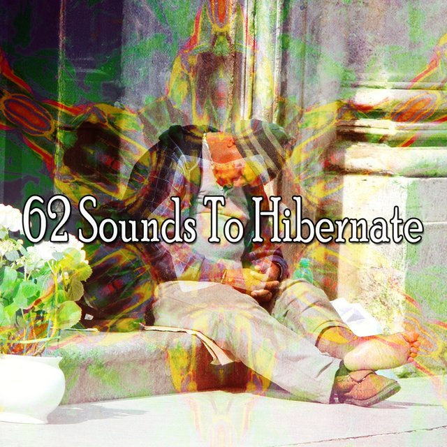 62 Sounds to Hibernate