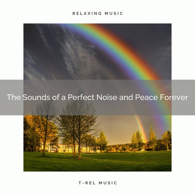 0001 The Sounds of a Perfect Noise and Peace Forever